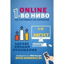 Първо учебно-оздравително ниво по Системата на Норбеков онлайн от 1 август