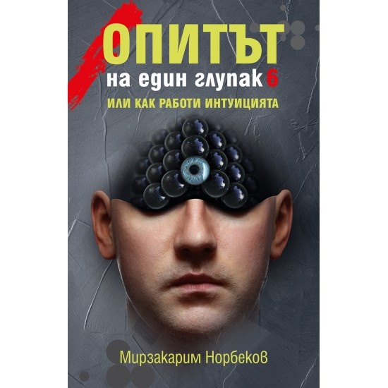 ОПИТЪТ НА ЕДИН ГЛУПАК 6